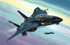 1/144 F-14A Black Tomcat - 04029