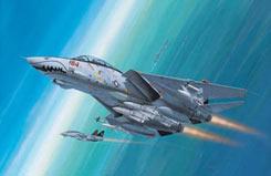 1/144 F-14D Super Tomcat - 04049