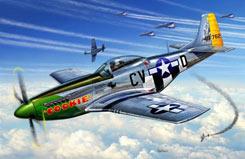 1/72 P-51D Mustang - 04148