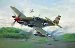 1/72 P-51B Mustang - 04182