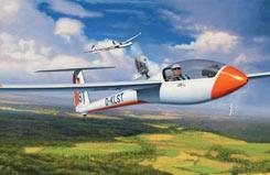 1/32 Ls8-T Glider - 04273