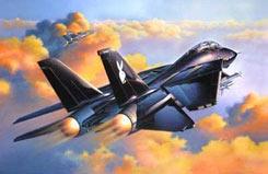 1/48 F14A Black Tomcat - 04514