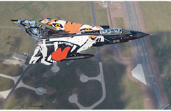 1/72 Tornado Black - 04660