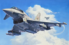 Revell 1/48 Eurofighter Kit - 04689
