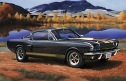 1:24 Shelby Mustang Gt350 H - 07242