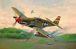 1/72 P-51 B Mustang Model Set - 64182