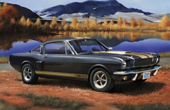 1/24 Shelby Mustang Model Set - 67242
