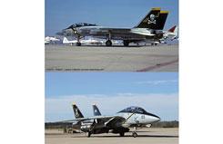 Hasegawa 1/72 F-14A/B Tomcat inchJolly - ha02106
