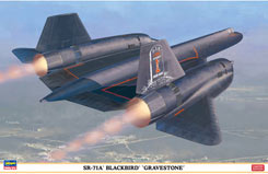 1:72 SR-71A Blackbird Gravestone - ha2001