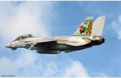 1:72 F-14A Tomcat Vf-211 Fighting - ha2022