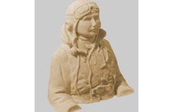 British Wwii Pilot - han8296