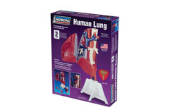 Lindberg 1/1 Human Lung Kit - ln71311