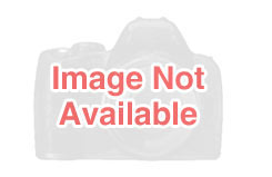 Ball Bearing-Rear - Nx76/Corsa 46 - u-g70357-16