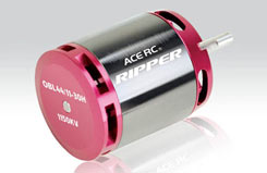 Ripper Bl/Motor 4311 30H - tt2379